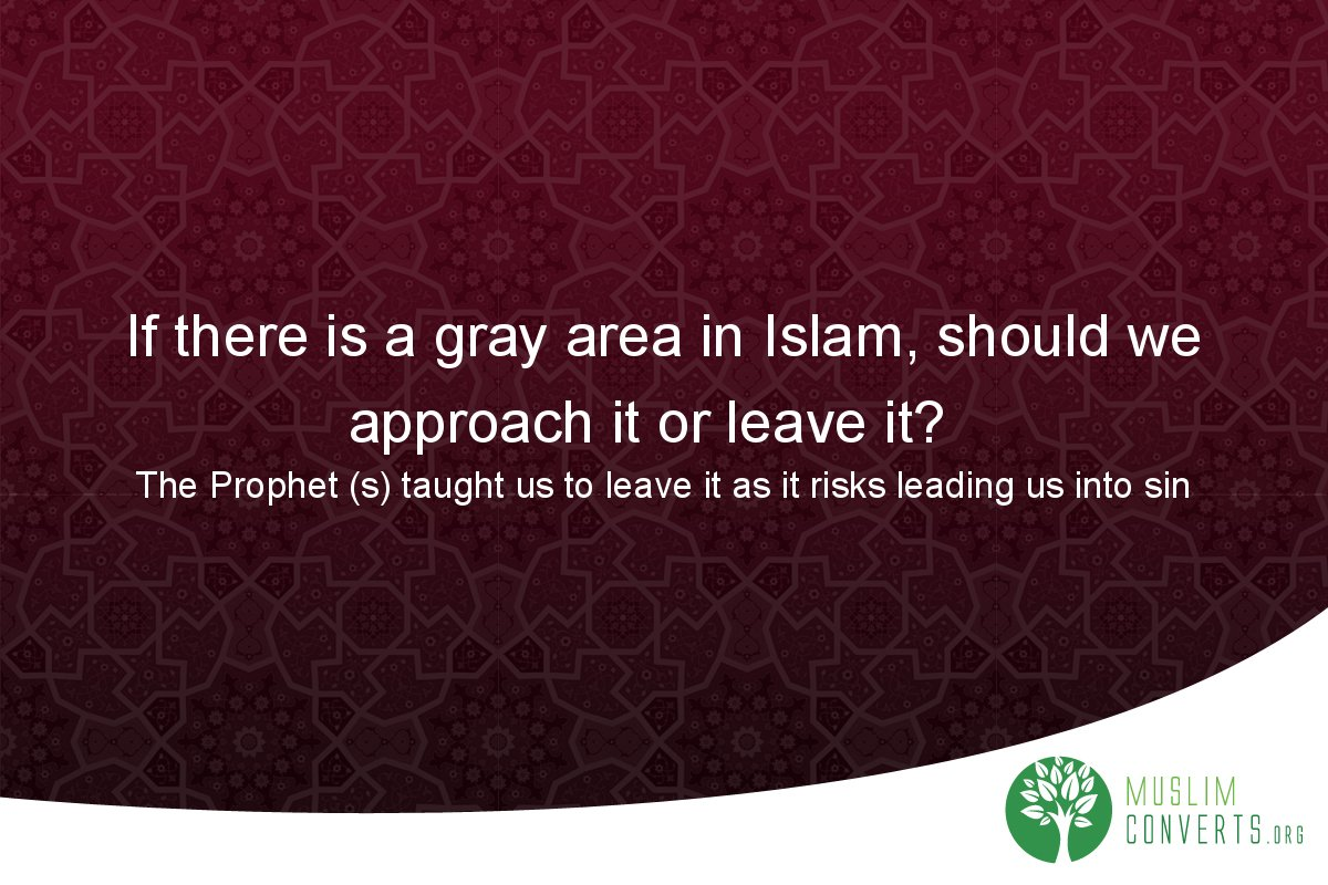 if-there-is-a-gray-area-in-islam-should-we-approach-it-or-leave-it