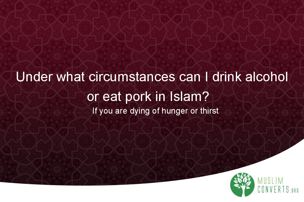 under-what-circumstances-can-i-drink-alcohol-or-eat-pork-in-islam