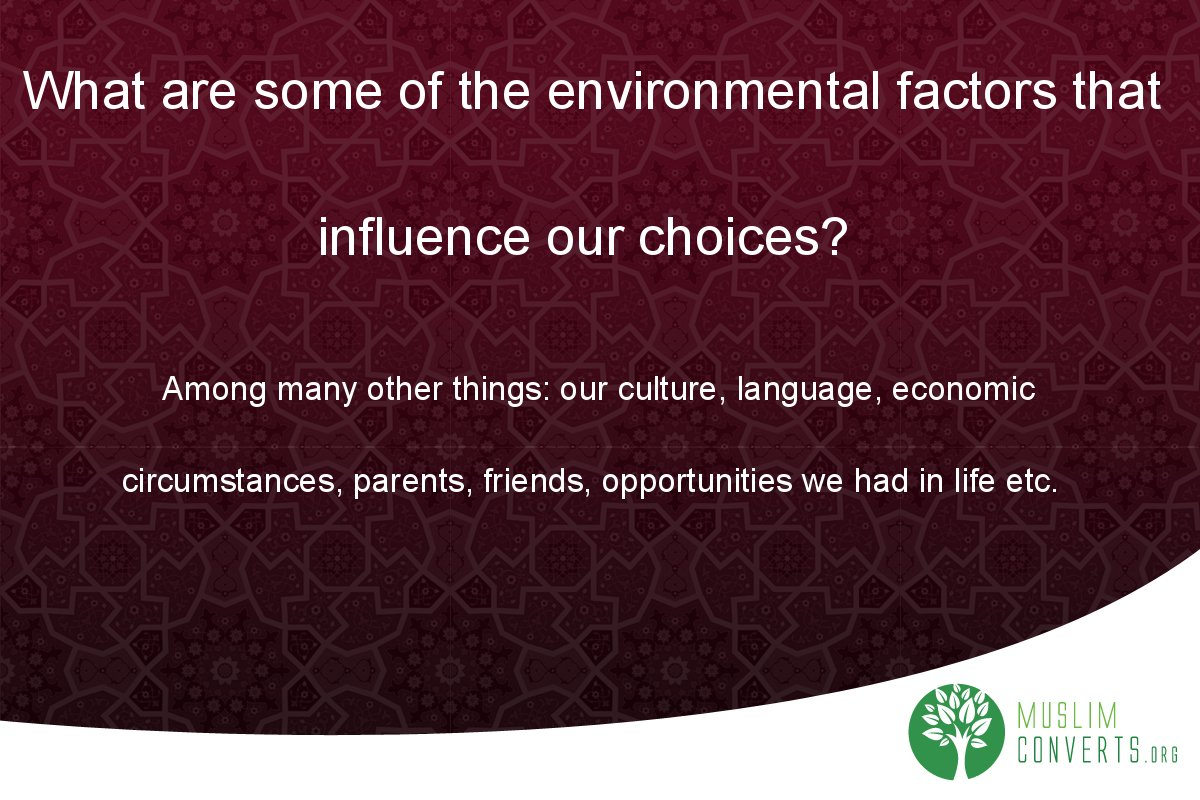 what-are-some-of-the-environmental-factors-that-influence-our-choices