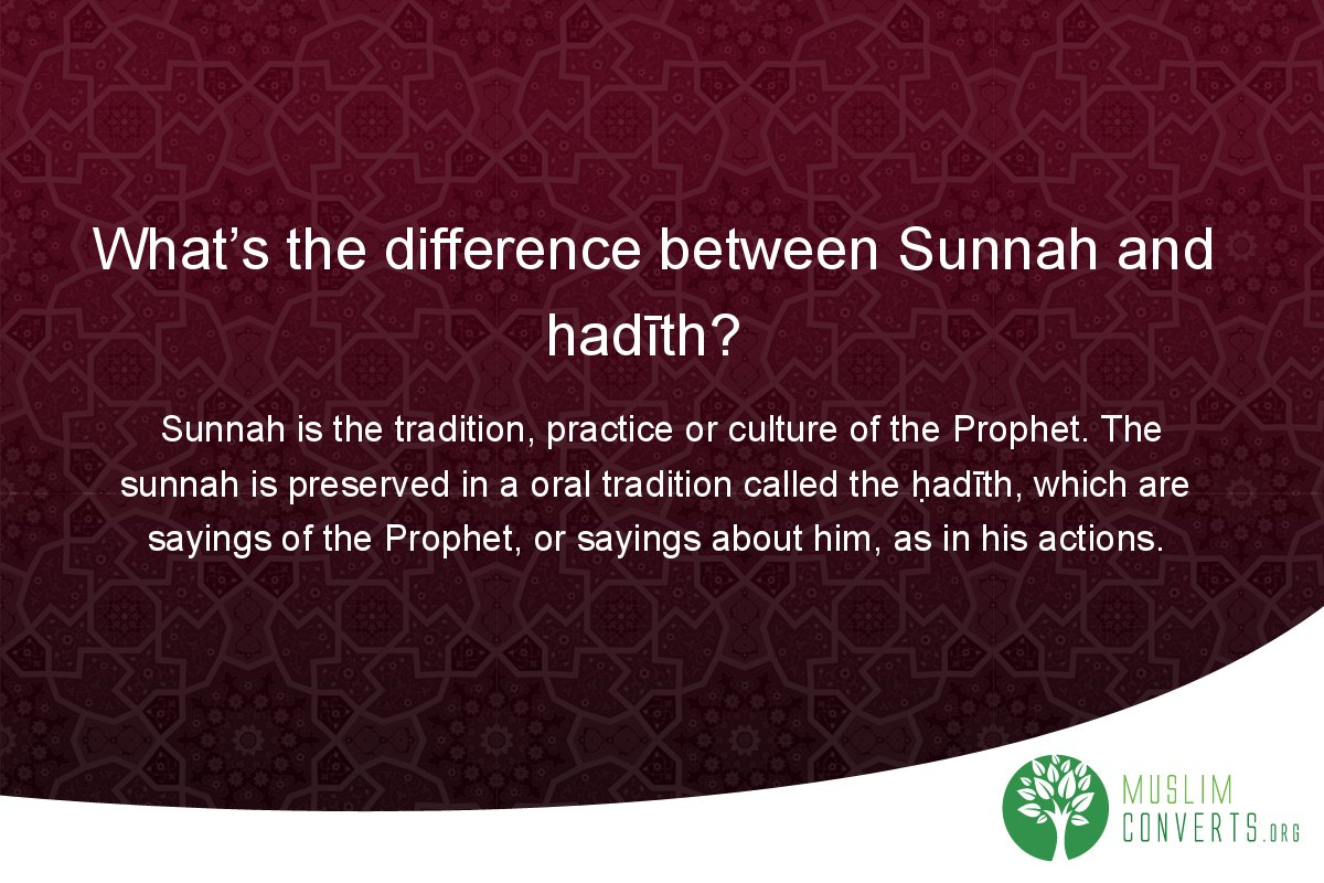 what-s-the-difference-between-sunnah-and-hadith